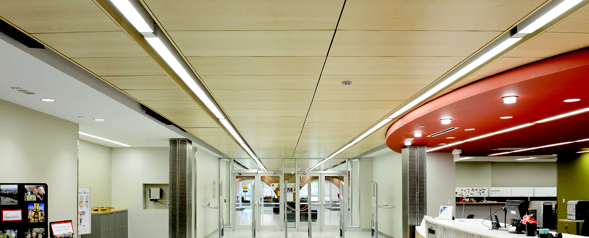 Acoustigreen | Acoustical Wood Panels for Ceilings and Walls